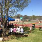 Hay Open 2014